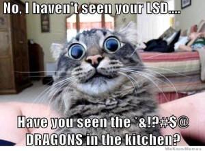 dragons LSD
