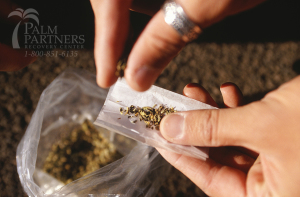 Philly Decriminalized Pot in New Law