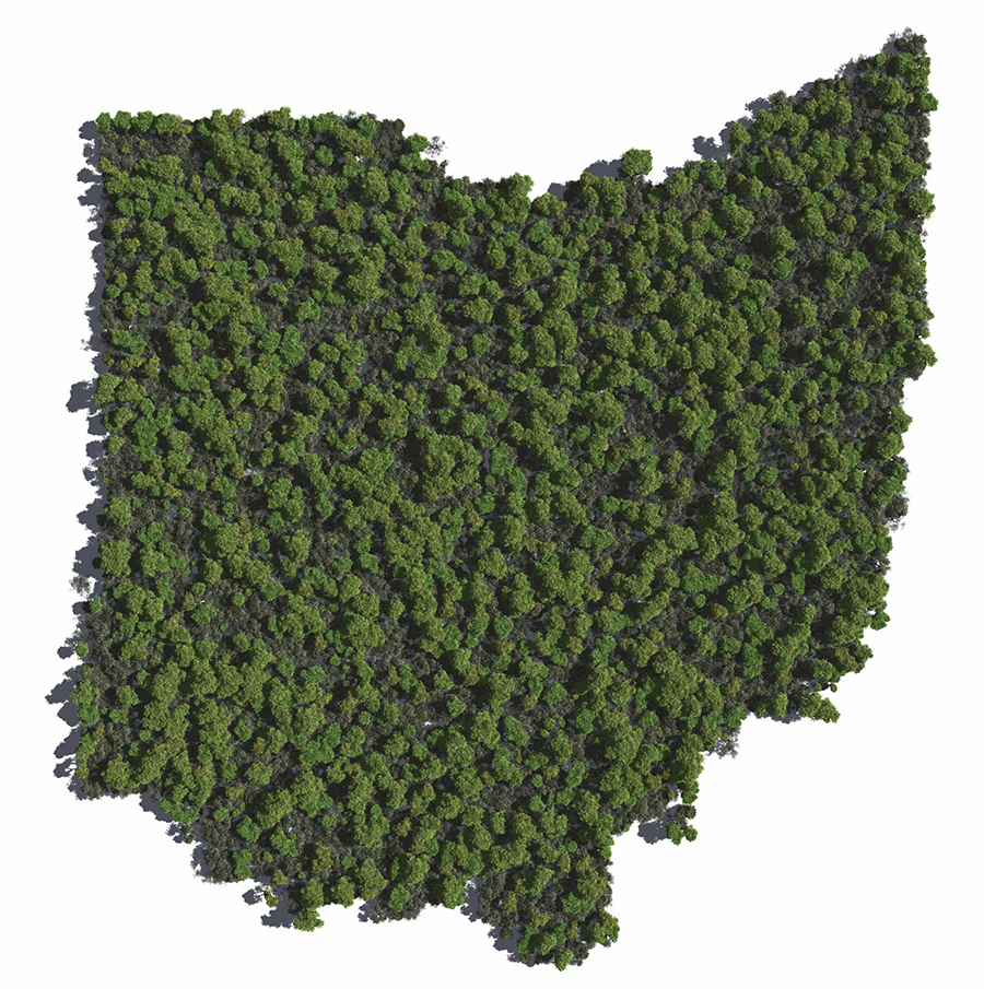 Will Ohio get Legal Weed this Year?