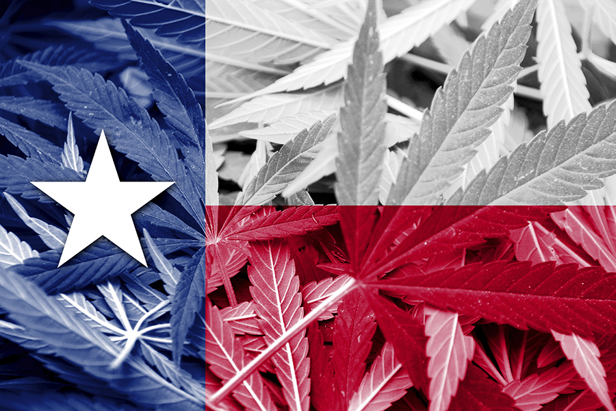 Texas Considering Religious Marijuana Rights