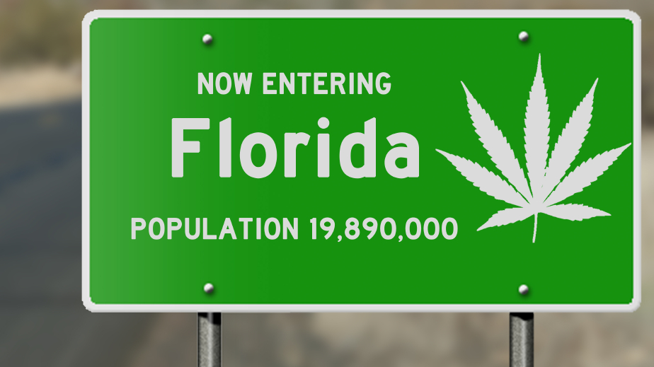 Palm Beach County Votes to Decriminalize Marijuana