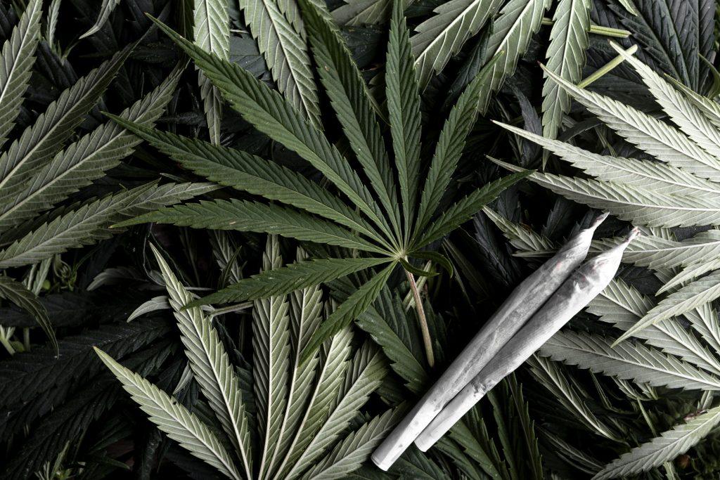 Legal Marijuana Coming to New Jersey and Virginia?