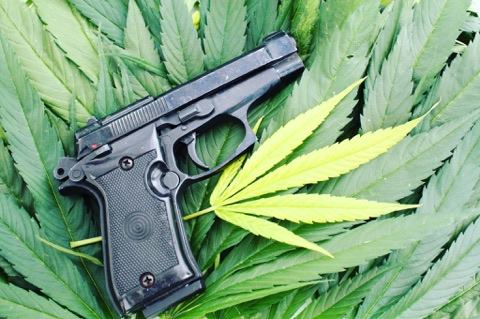 Should Marijuana Get Same State-to-State Treatment as Guns?